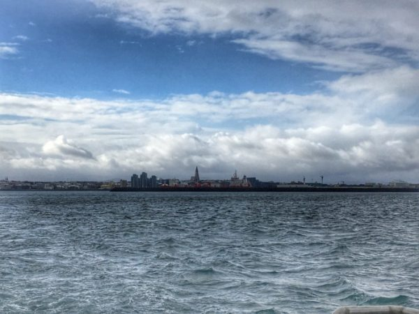 Looking back to Reykjavik on the whale watching tour